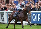 Blinkers Help Olympic Glory to QE II Tally