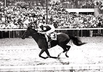 The inagural Super Derby was won by Belmont Stakes winner Temperence Hill, who went over the $1,000,000 in earnings for the year and secured the 3-year old colt championship with his victory.