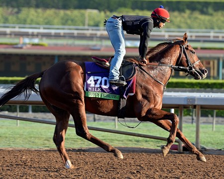 Caption:  Tom's Tribute
