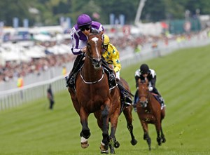 St Nicholas Abbey wins the Coronation Stakes, (3rd in a row), at Epsom 1/6/2013, defeating Dunaden and Joshua Tree.