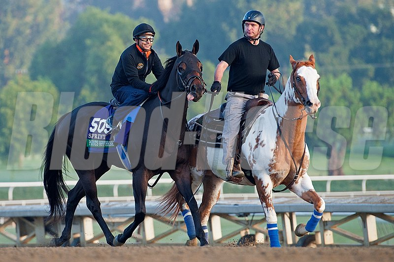 Caption:  Points Offthebench with Mike Smith the morning of his breakdown on Oct. 26, 2013