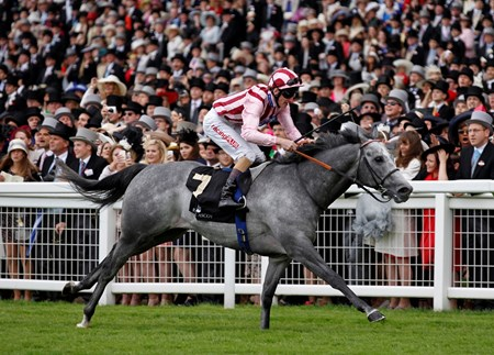 The Diamond Jubilee Stakes was won by Lethal Force ridden by Adam Kirby June 22, 2013.