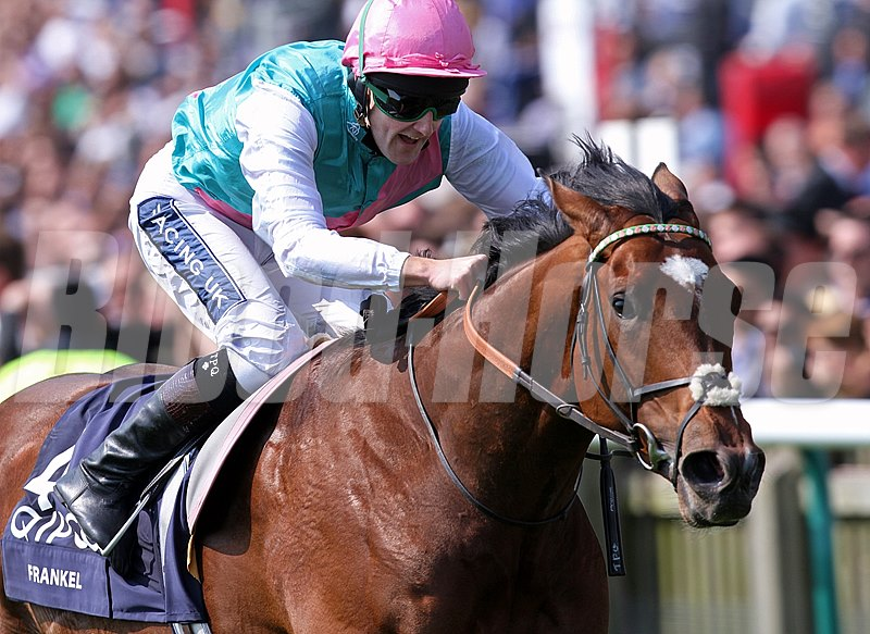 Frankel, ridden by Tom Queally, wins the Newmarket 2,000 guineas with ease April 30, 2011.