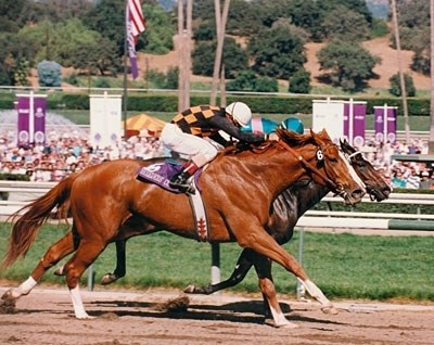 In 1993, Phone Chatter (outside) defeated Sardula by a head, as favorite Heavenly Prize finished 3rd. Phone Chatter was named 2-year old Champion.