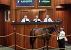 Hip 285, a colt by Bernardini, brought $1.4 million to top the session.