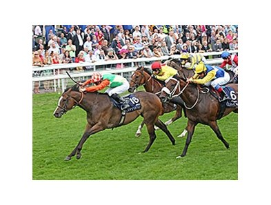 "Jwala wins the 2013 Coolmore Nunthorpe Stakes.<br><a target=""blank"" href=""http://photos.bloodhorse.com/AtTheRaces-1/at-the-races-2013/27257665_QgCqdh#!i=2718892501&k=9tcsxLn"">Order This Photo</a>"