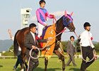 "Shuka Sho winner Meisho Mambo<br><a target=""blank"" href=""http://photos.bloodhorse.com/AtTheRaces-1/at-the-races-2013/27257665_QgCqdh#!i=2830073827&k=tsMMR77"">Order This Photo</a>"