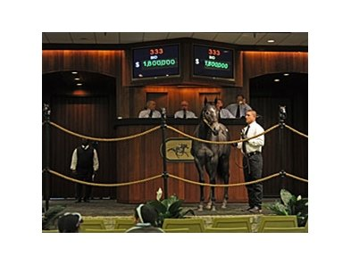 Hip No. 333, a Smart Strike colt, sold for $1.8 million.