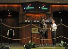 Record Smart Strike Colt Brings $1.8M at OBS