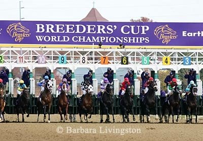 Out of the gate in the 2006 Breeders Cup Juvenile at Churchill Downs.