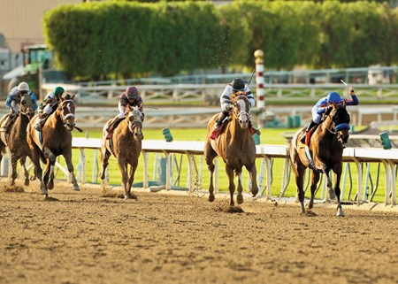 Coming in at #4 was the 2014 Santa Anita Handicap (gr. IT) at Santa Anita Park.