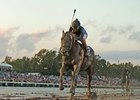 Shown here winning the Breeders' Cup Classic, Powered by Dodge.
