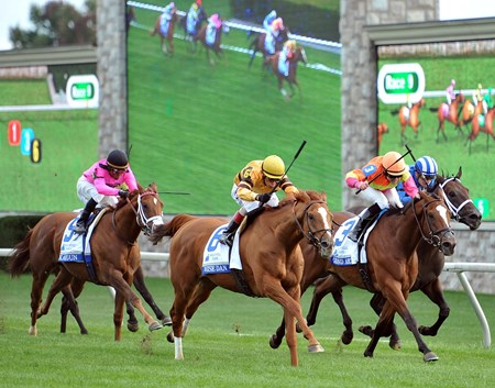 Wise Dan hesitated at the start of the $1,000,000 Grade I Shadwell Turf Mile at Keeneland and the 9-10 favorite found himself dead last headed into the first turn. Regardless of the challenge Wise Dan catches up with the rest of the field in the stretch.