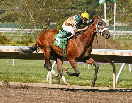 Mucho Macho Man, with Eibar Coa riding, won the 7th race for Two-Year-Old Maidens at Monmouth Park on Sunday September 19, 2010.