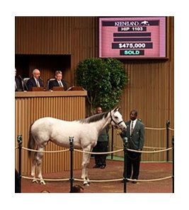 Saturday's session topper was a filly by Tapit that brought $475,000.