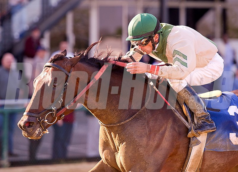 In this photo released by the Maryland Jockey Club, Abstraction ridden by Leandro Goncalves wins the $75,750 Federico Tesio Stakes for 3-year-olds at Pimlico Race Course on Saturday, April 27 2013. 