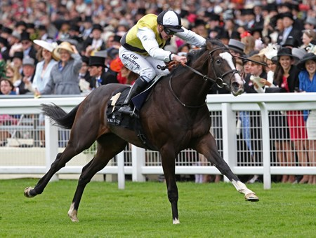 The Chesham Stakes won by Berkshire and Jim Crowley June 22, 2013.