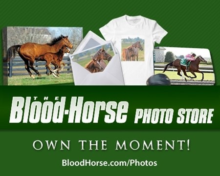 Shop The Blood-Horse Photo Store at BloodHorse.com/Photos