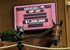 Fiftyshadesofhay was purchased by Barbara Banke for $1.3 million Nov. 5.
