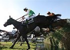 Many Clouds Takes Jockey to 2nd National Win