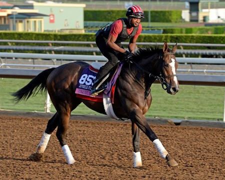 Caption:  Conquest Harlanate