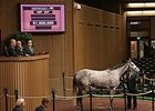 Hard Not To Like, Hip 307, sold for $1.5 million on Nov. 5.