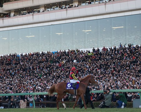 Orfevre goes out a champion in front of tens of thousands of screaming fans.