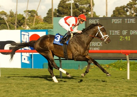 Aaron and Marie Jones' Sunriver, with jockey Garrett Gomez aboard, outruns the field to win the Grade I, $250,000 Hollywood Turf Cup, Saturday, December 8, 2007 at Hollywood Park, Inglewood CA. ©BENOIT PHOTO