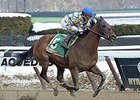 "Salutos Amigos wins his fourth straight stakes in the Tom Fool.<br><a target=""blank"" href=""http://photos.bloodhorse.com/AtTheRaces-1/At-the-Races-2015/i-MQKF72V"">Order This Photo</a>"