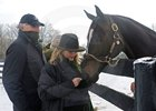 Zenyatta waits for owner Ann Moss to unwrap a mint for her as owner Jerry Moss, left, looks on.