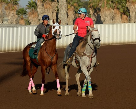 preparing to work