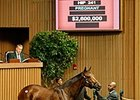Star Billing, Hip 241, was purchased for $2.6 million at the Keeneland November Sale.