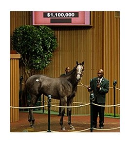 Hip 110, an Unbridled's Song colt out of Irish Smoke, sold for $1.1 million.