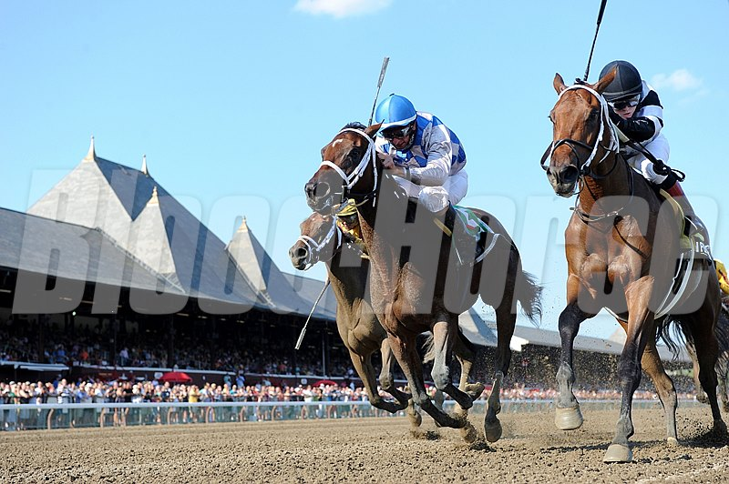 The $150,000 Grade III Schuylerville Stakes ended in a dead heat after a tremendous battle down the stretch between pacesetter Brazen Persuasion and favored Bahnah on opening day at Saratoga.