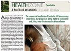 Health Zone: A Hard Look at Laminitis