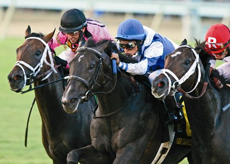 War Dancer, center, wins The Virginia Derby. Jack Milton, also by War Front, finishes third.