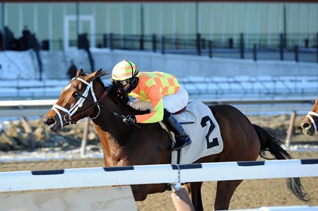 Fierce Boots stomps to victory in the Busanda Stakes at Aqueduct in New York.