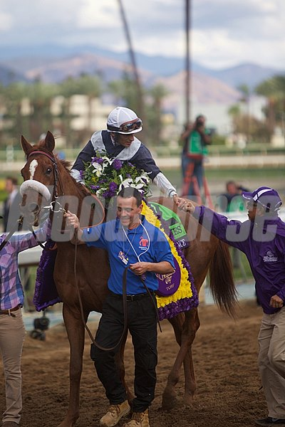 Jockey John Velazquez is all smiles aboard Main Sequence after winning the Breeders' Cup Turf.