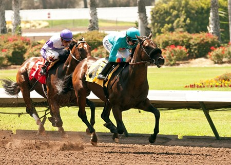 Cecil Peacock's Story to Tell and jockey Joe Talamo win the $100,000 W.L. Proctor Memorial Stakes at Los Alamitos Race Course.