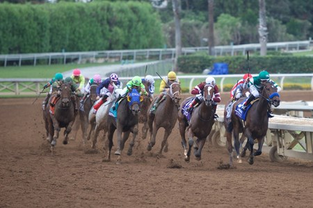 Final turn of the Grade I Breeders' Cup Distaff.