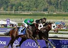 2012 Breeders' Cup World Championships - Day 1