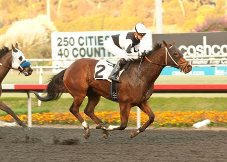 Jockey Amelia Green scored her first career victory aboard her very first Hollywood Park ride when Twin Six carried the 20-year-old native of England to victory in the Nightcap.