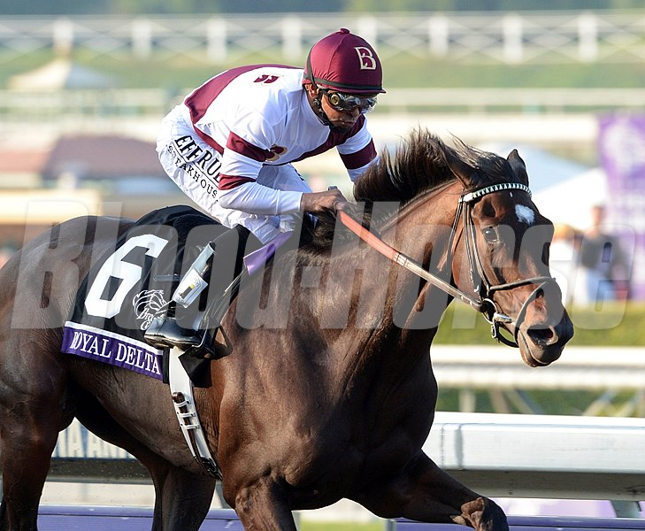 Royal Delta wins the Breeders' Cup Ladies' Classic (gr. 1) Jockey: Mike Smith SANTA ANITA PARK, Arcadia, CA Purse: $2,000,000 Date: November 2, 2012 Class: Grade I TV: NBC Sports Network Age: 3YO&UP Race: 9 Distance: 1 1/8 miles Post Time: 4:30 PM PDT