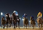 Frankyfourfingers holds on to win the Al Maktoum Challenge R2.