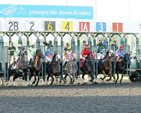 Start of the 7th Running of the Leematt Stakes at Presque Isle Downs in Erie, Pennsylvania.