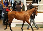Seamour (IRE), Lot 1436, was purchased for 110,000 guineas.