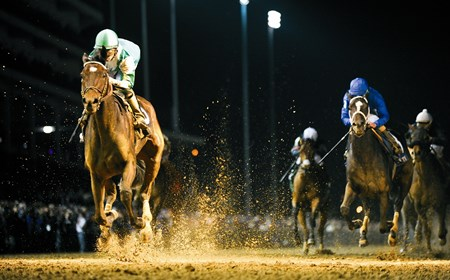 Royal Delta wins the 2011 Breeders' Cup Distaff (G1).