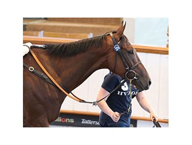 Durand brought 260,000 guineas ($409,691 in U.S. funds) to top day two at the Tattersalls July sale.