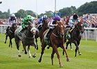 The 2014 Juddmonte International is the world's top race, shown being won by Australia.