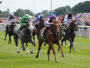 Australia winning the Juddmonte International Stakes.
